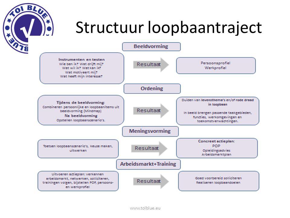Marinka Kuijpers Loopbaancompetenties en de leeromgeving van leerlingen in het beroepsonderwijs www.toiblue.eu