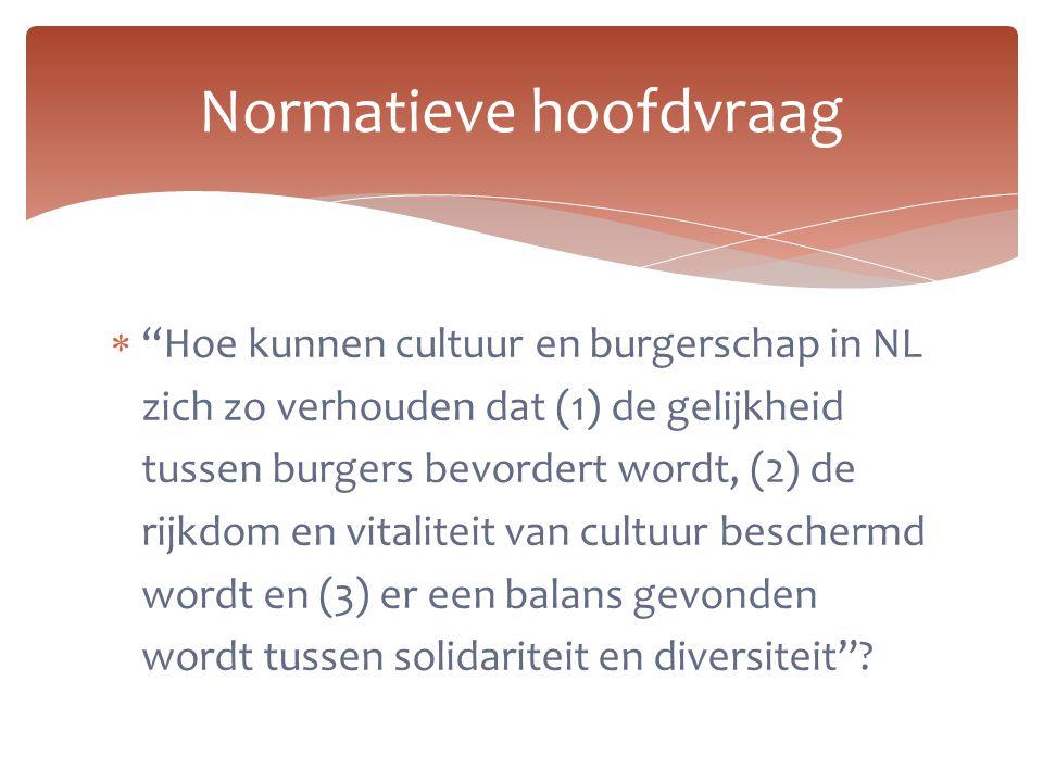 """ """"Hoe kunnen cultuur en burgerschap in NL zich zo verhouden dat (1) de gelijkheid tussen burgers bevordert wordt, (2) de rijkdom en vitaliteit van cu"""