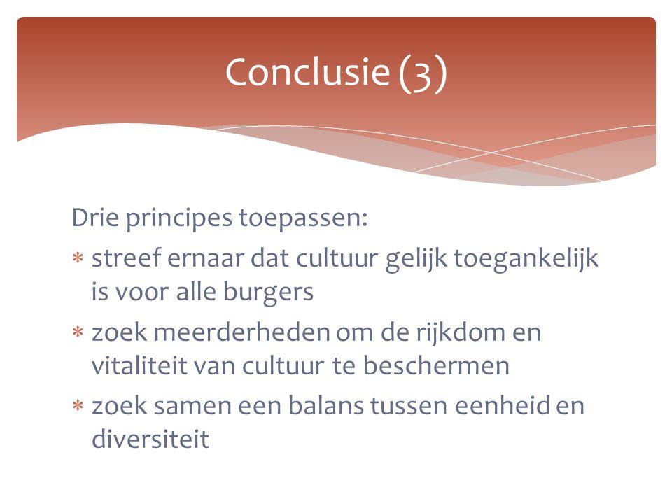Drie principes toepassen:  streef ernaar dat cultuur gelijk toegankelijk is voor alle burgers  zoek meerderheden om de rijkdom en vitaliteit van cul
