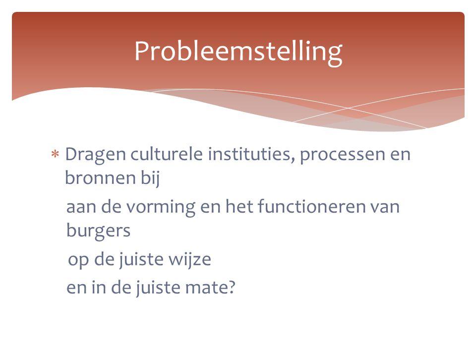  Dragen culturele instituties, processen en bronnen bij aan de vorming en het functioneren van burgers op de juiste wijze en in de juiste mate? Probl