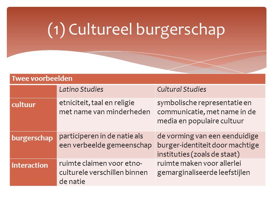 Twee voorbeelden Latino StudiesCultural Studies cultuur etniciteit, taal en religie met name van minderheden symbolische representatie en communicatie