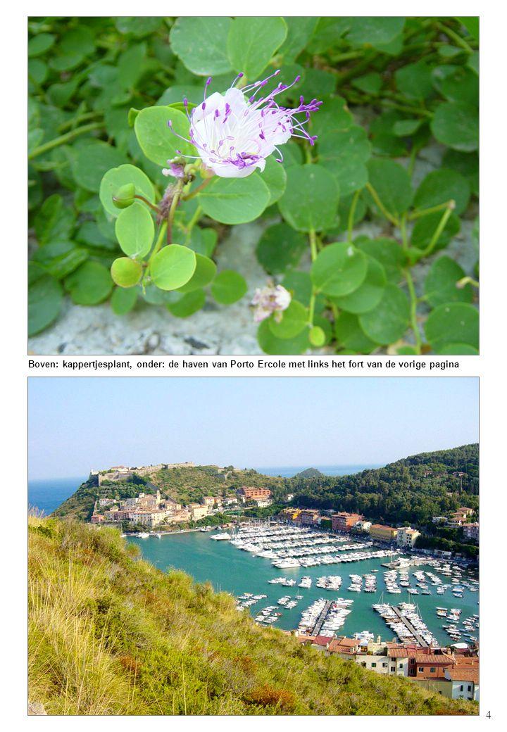 4 Boven: kappertjesplant, onder: de haven van Porto Ercole met links het fort van de vorige pagina