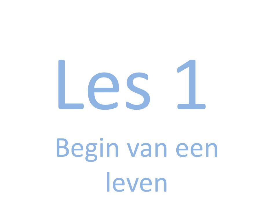 Les 1 Begin van een leven