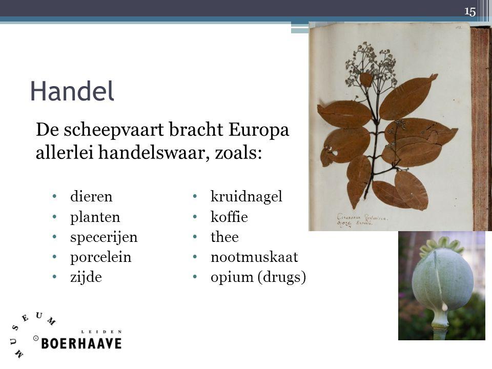 Handel dieren planten specerijen porcelein zijde kruidnagel koffie thee nootmuskaat opium (drugs) 15 De scheepvaart bracht Europa allerlei handelswaar