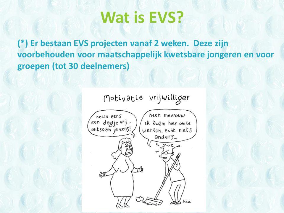Wat is EVS. (*) Er bestaan EVS projecten vanaf 2 weken.