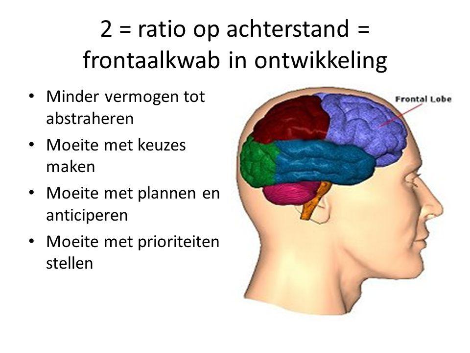 3 = heftige emoties = amygdala meer de overhand Emoties minder onder controle Negatieve emoties sneller de overhand Moeite met lezen van gezichtsexpressies en hierdoor minder inlevingsvermogen