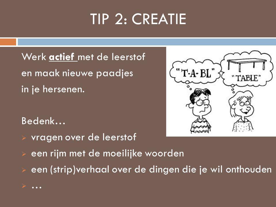 TIP 2: CREATIE Werk actief met de leerstof en maak nieuwe paadjes in je hersenen. Bedenk…  vragen over de leerstof  een rijm met de moeilijke woorde