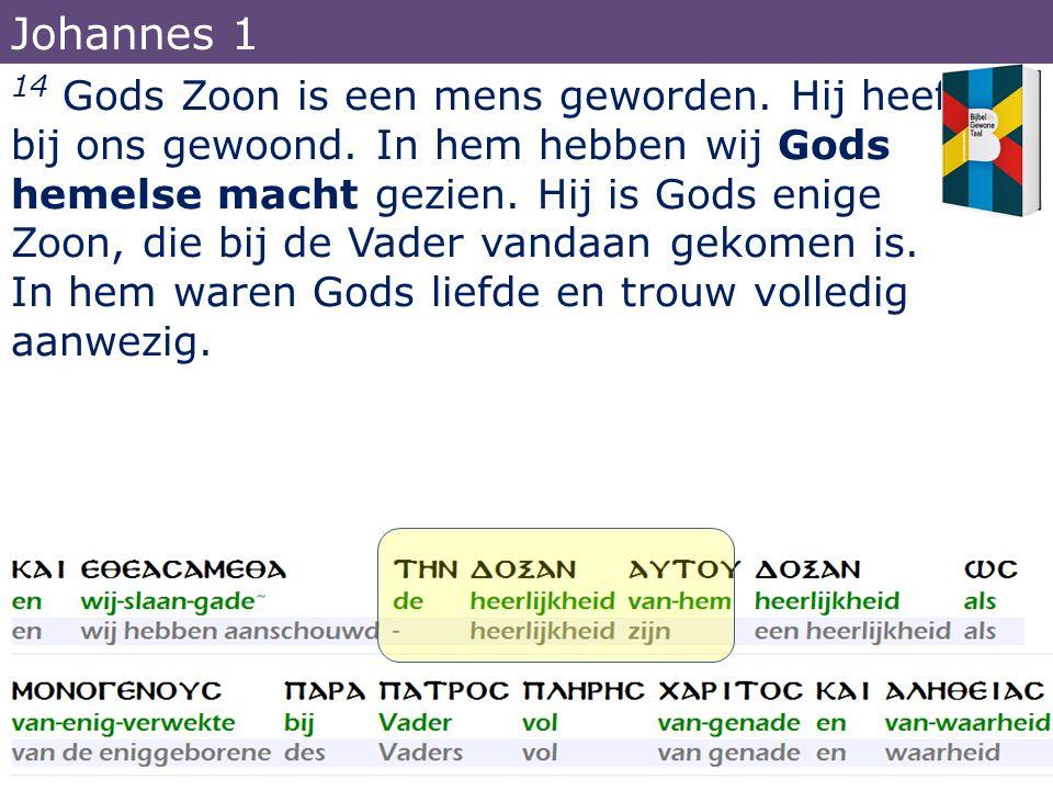 14 Gods Zoon is een mens geworden. Hij heeft bij ons gewoond. In hem hebben wij Gods hemelse macht gezien. Hij is Gods enige Zoon, die bij de Vader va