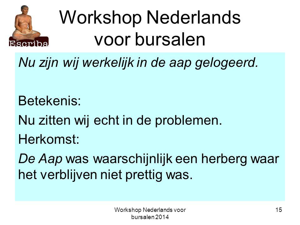 Workshop Nederlands voor bursalen 2014 15 Workshop Nederlands voor bursalen Nu zijn wij werkelijk in de aap gelogeerd. Betekenis: Nu zitten wij echt i