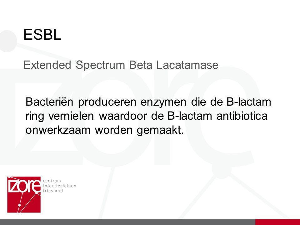 ESBL Extended Spectrum Beta Lacatamase Bacteriën produceren enzymen die de B-lactam ring vernielen waardoor de B-lactam antibiotica onwerkzaam worden gemaakt.