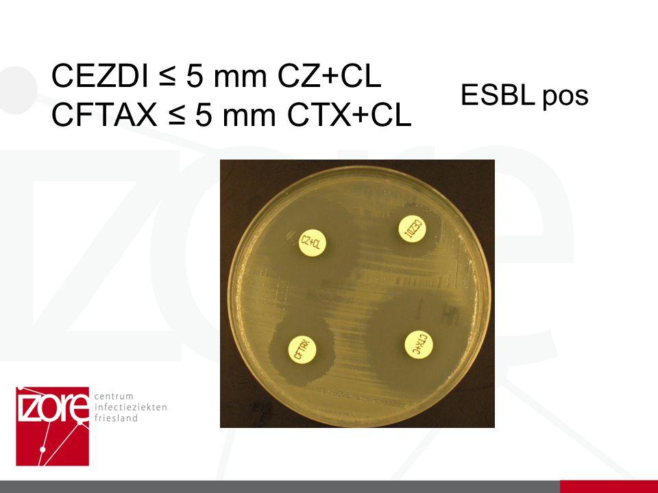 CEZDI ≤ 5 mm CZ+CL CFTAX ≤ 5 mm CTX+CL ESBL pos