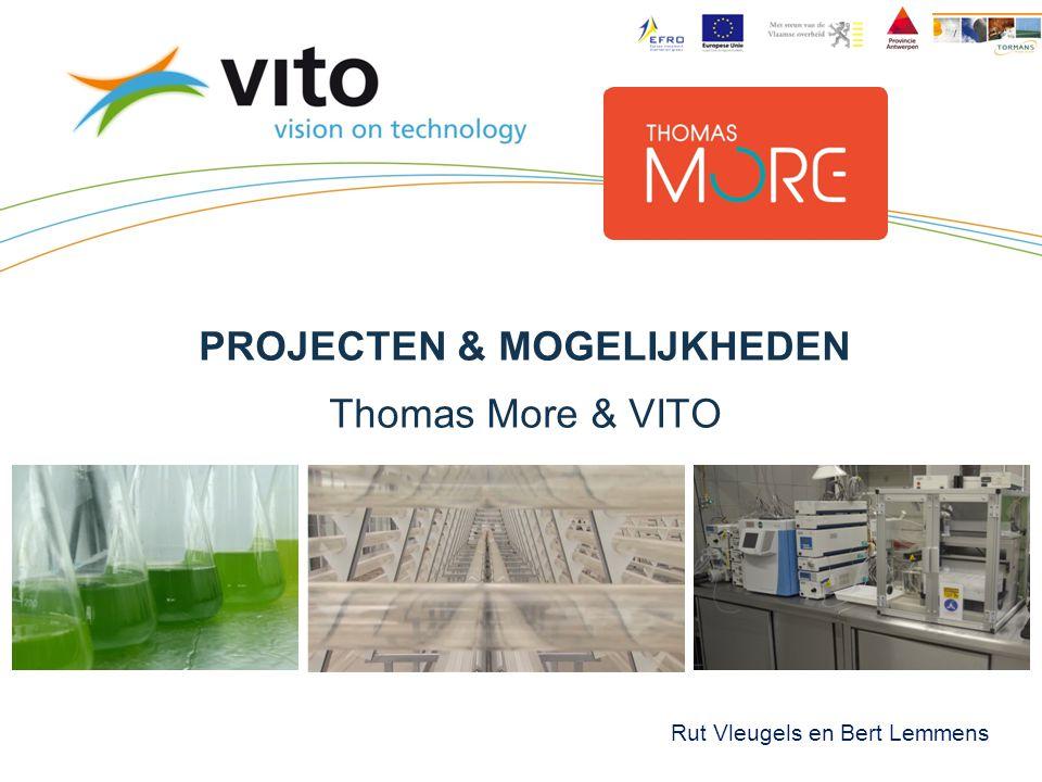 PROJECTEN & MOGELIJKHEDEN Thomas More & VITO Rut Vleugels en Bert Lemmens