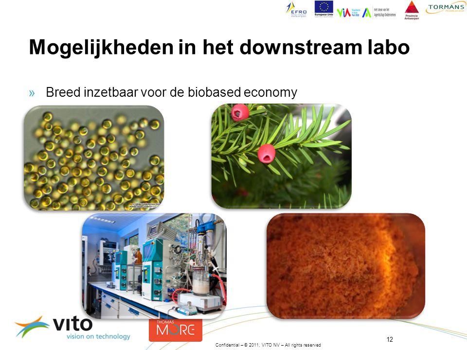 12 Confidential – © 2011, VITO NV – All rights reserved »Breed inzetbaar voor de biobased economy Mogelijkheden in het downstream labo