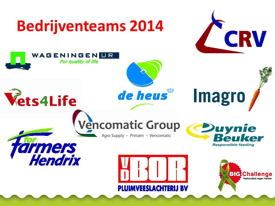 Bedrijventeams 2014