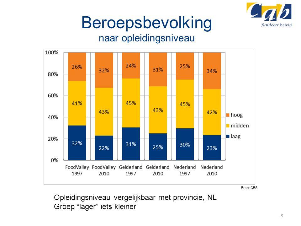 "Beroepsbevolking naar opleidingsniveau 8 Bron: CBS Opleidingsniveau vergelijkbaar met provincie, NL Groep ""lager"" iets kleiner"