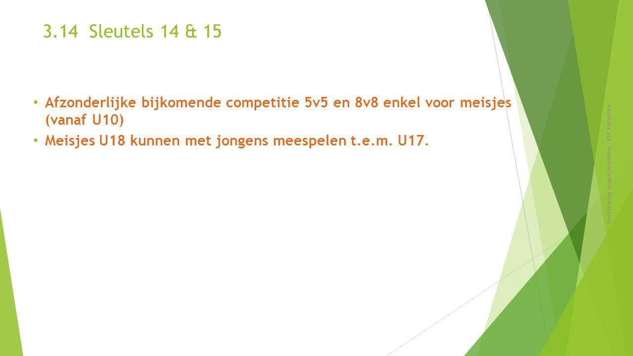 3.14 Sleutels 14 & 15 Hervorming Jeugdcompetitie - KSK Kasterlee 36 Afzonderlijke bijkomende competitie 5v5 en 8v8 enkel voor meisjes (vanaf U10) Meis