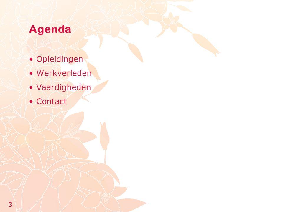 Agenda Opleidingen Werkverleden Vaardigheden Contact 3