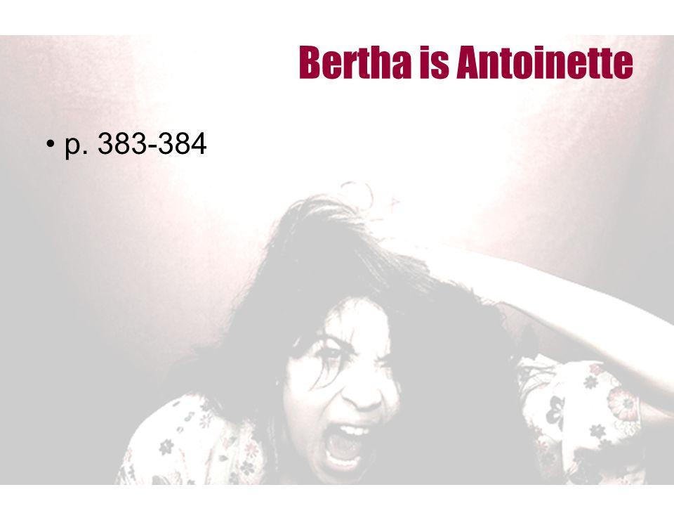 Bertha is Antoinette p. 383-384