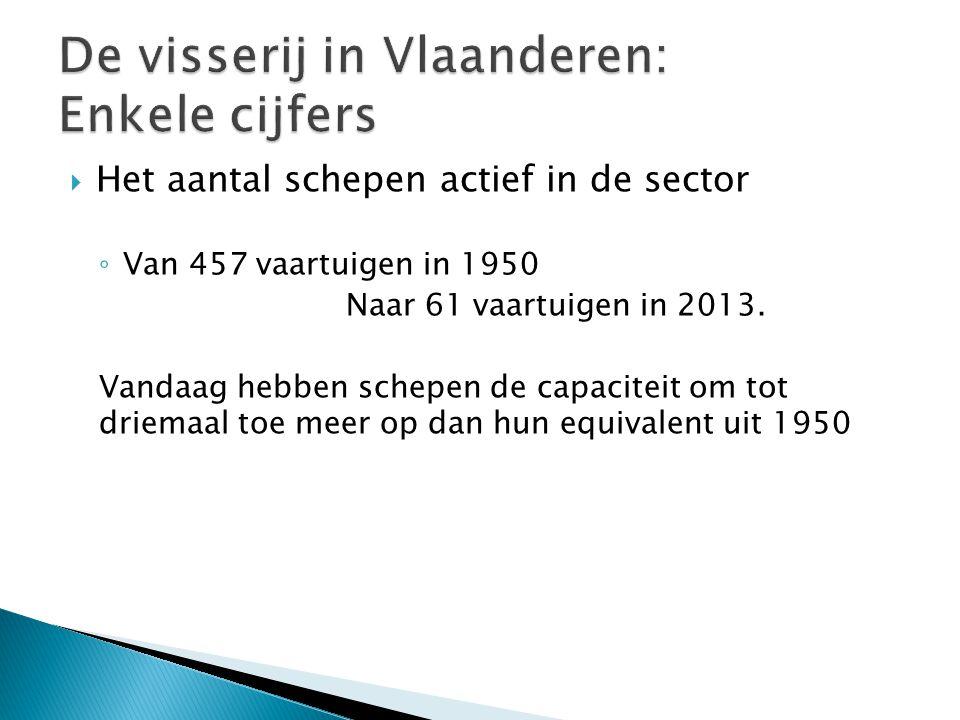  Het aantal schepen actief in de sector ◦ Van 457 vaartuigen in 1950 Naar 61 vaartuigen in 2013.