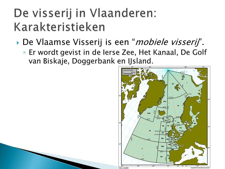 """ De Vlaamse Visserij is een """"mobiele visserij"""". ◦ Er wordt gevist in de Ierse Zee, Het Kanaal, De Golf van Biskaje, Doggerbank en IJsland."""
