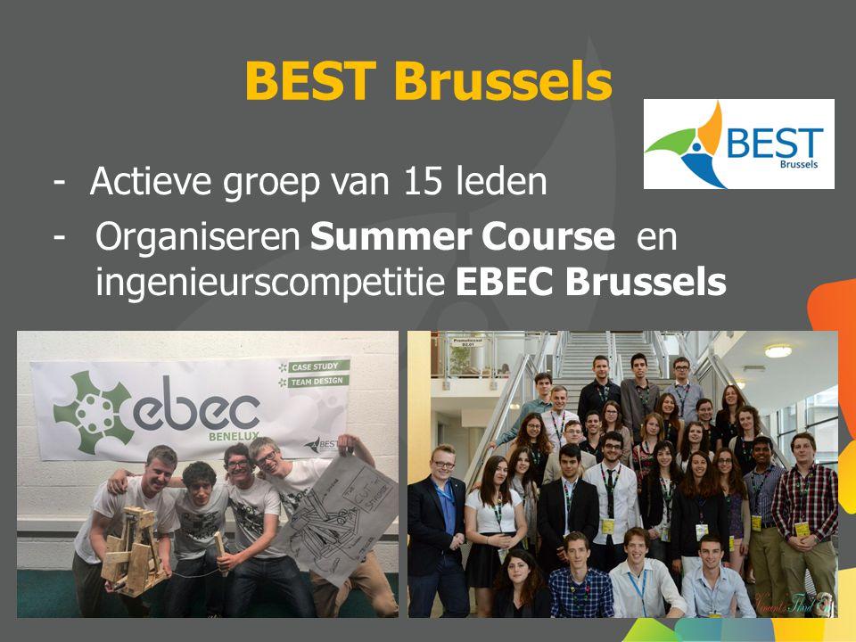 BEST Brussels - Actieve groep van 15 leden -Organiseren Summer Course en ingenieurscompetitie EBEC Brussels
