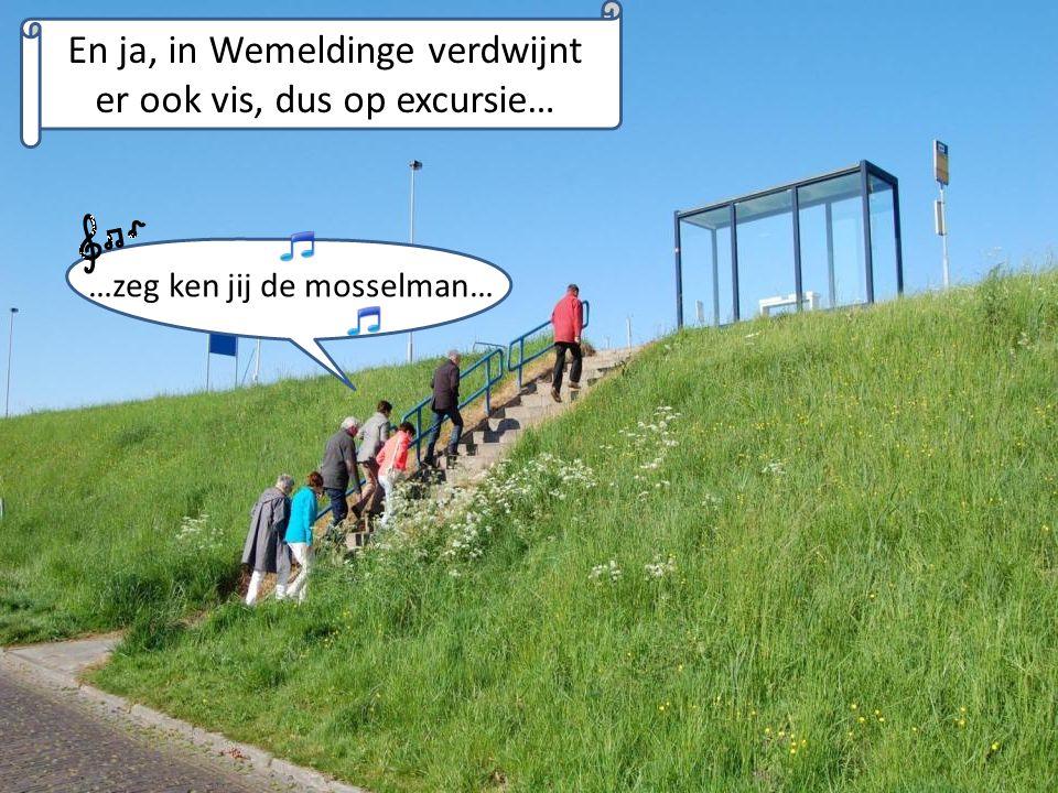 En ja, in Wemeldinge verdwijnt er ook vis, dus op excursie… …zeg ken jij de mosselman…