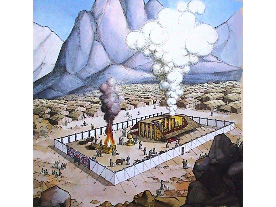Ex.27:1-8 / Lev. 6:8-13 Hoe vaak brandde het vuur op het brandofferaltaar.