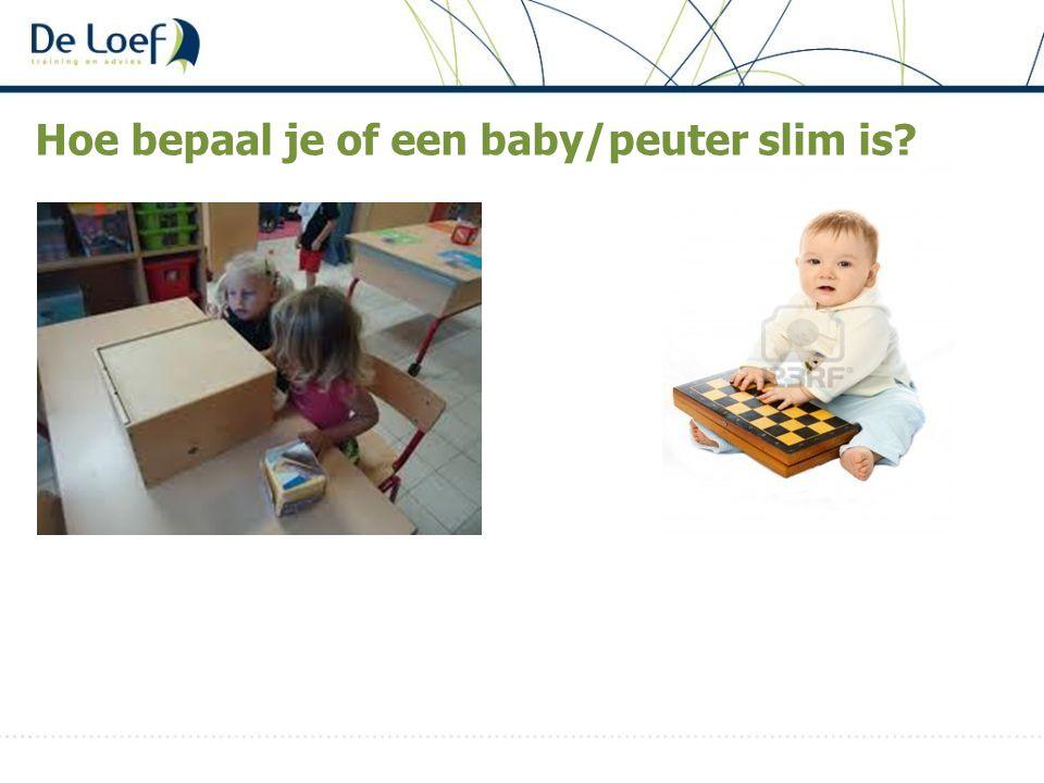 Hoe bepaal je of een baby/peuter slim is?