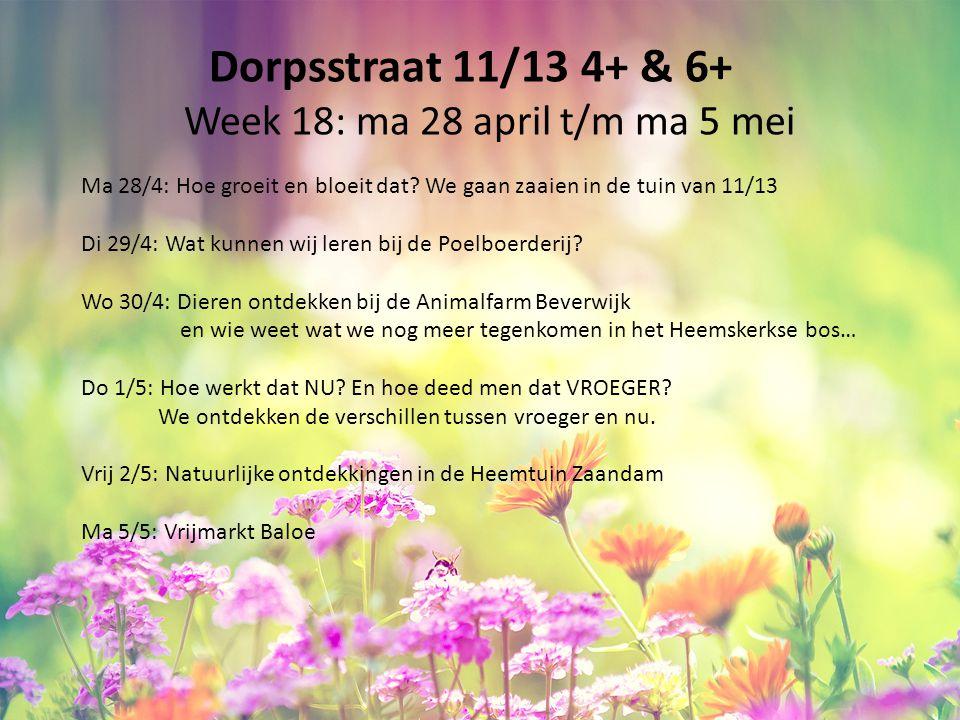 Dorpsstraat 11/13 4+ & 6+ Week 18: ma 28 april t/m ma 5 mei Ma 28/4: Hoe groeit en bloeit dat? We gaan zaaien in de tuin van 11/13 Di 29/4: Wat kunnen
