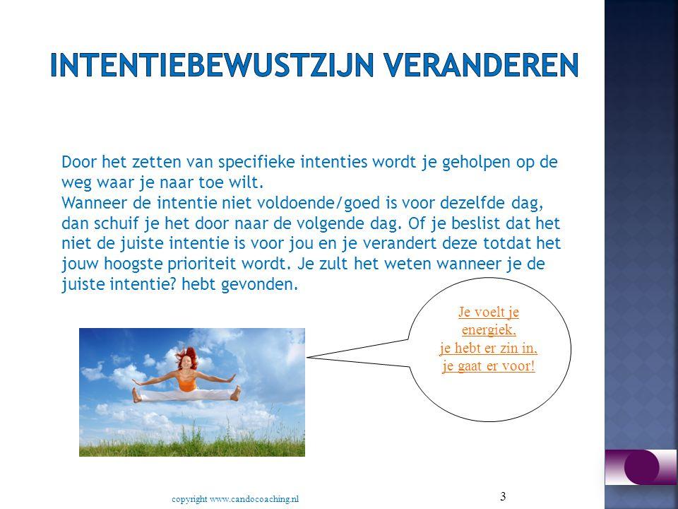 4 Met het e-boek De Intentie Gids heeft Margje van der Lei van CanDoCoaching op een simpele maar krachtige manier uitleg gegeven aan hoe je je intentie zet.