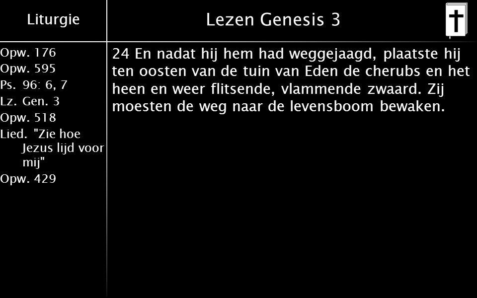 Liturgie Opw.176 Opw.595 Ps.96: 6, 7 Lz.Gen.