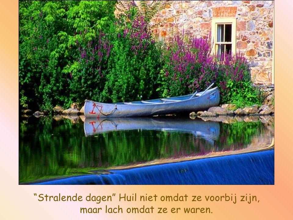 Zij die geen angst kennen, kennen geen moed. Want werkelijke moed, is het overwinnen van de angst.