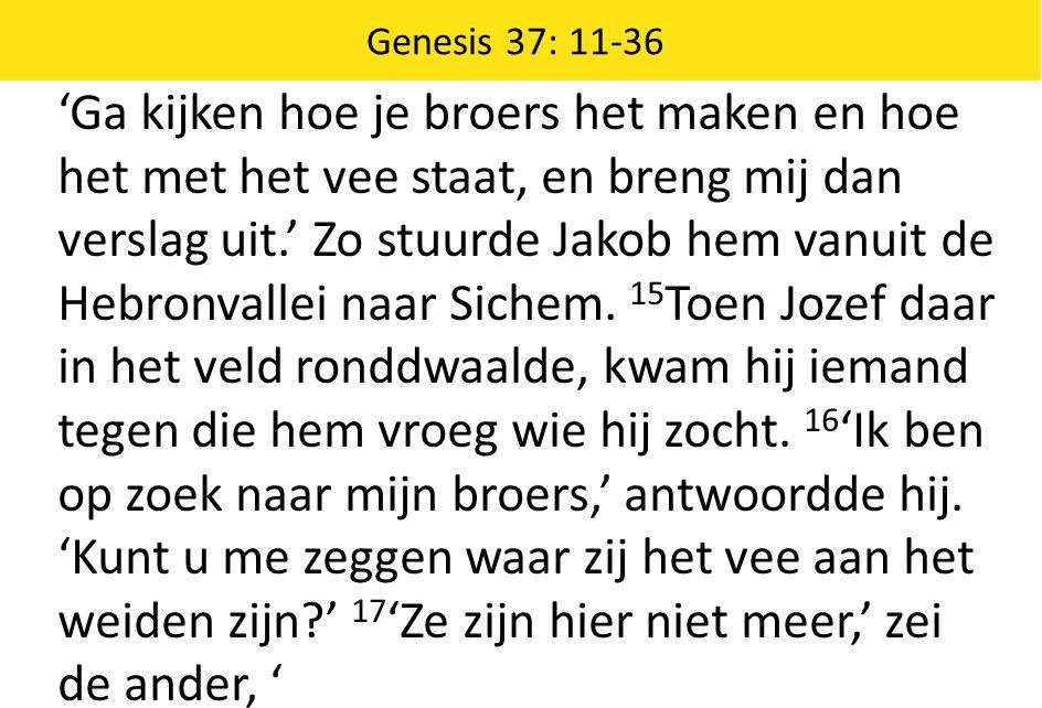 'Ga kijken hoe je broers het maken en hoe het met het vee staat, en breng mij dan verslag uit.' Zo stuurde Jakob hem vanuit de Hebronvallei naar Siche