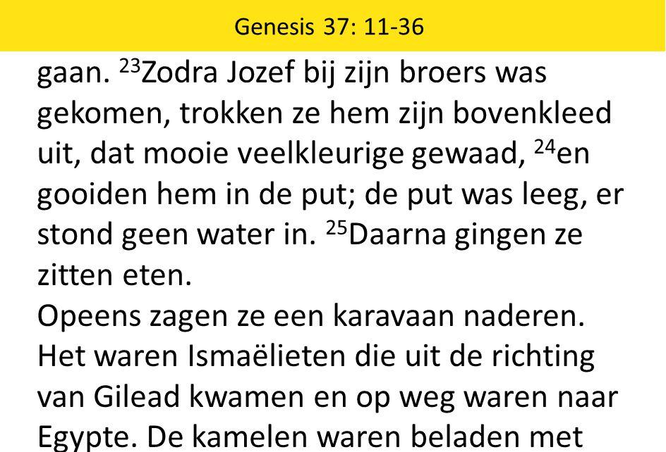 gaan. 23 Zodra Jozef bij zijn broers was gekomen, trokken ze hem zijn bovenkleed uit, dat mooie veelkleurige gewaad, 24 en gooiden hem in de put; de p