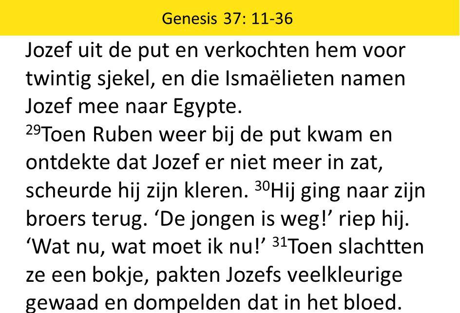 Jozef uit de put en verkochten hem voor twintig sjekel, en die Ismaëlieten namen Jozef mee naar Egypte. 29 Toen Ruben weer bij de put kwam en ontdekte