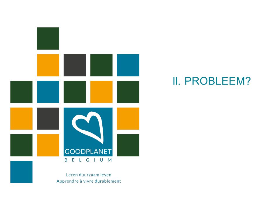 II. PROBLEEM