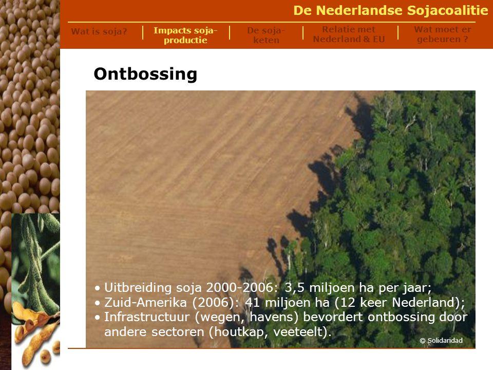 De Nederlandse Sojacoalitie De correntão-techniek wordt veel gebruikt voor ontbossing: twee enorme bulldozers trekken een dikke stalen ketting tussen zich in over het land.