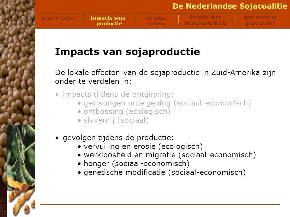 De Nederlandse Sojacoalitie Vervuiling Foto © AIDEnvironment Bij de sojateelt worden grote hoeveelheden landbouwgif en kunstmest ingezet.