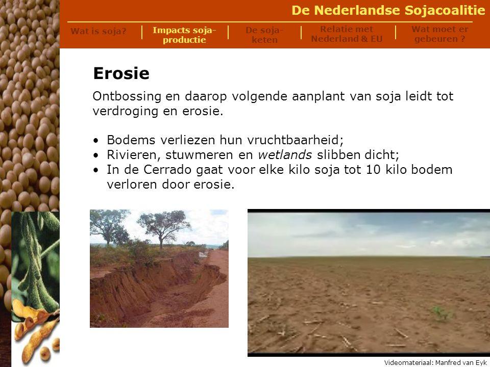 De Nederlandse Sojacoalitie Traditionele landbouw: 40 arbeiders per 200 ha; Grootschalige sojaproductie: één arbeider per 200 ha - vaak een externe arbeidskracht; Migratie naar steden en natuurgebieden.