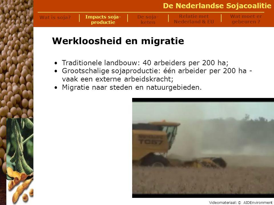 De Nederlandse Sojacoalitie Honger Verlies landbouwgrond voor (lokale) voedselproductie; Meer eenzijdige voeding.