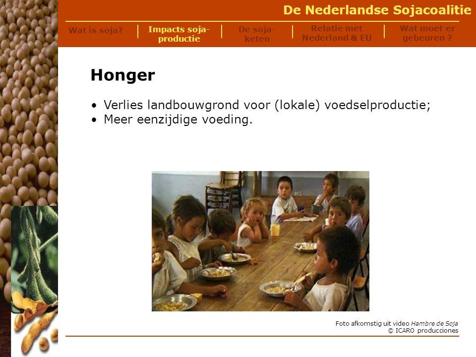 De Nederlandse Sojacoalitie 60% van de soja is zogenaamde RoundUp Ready (RR) soja.