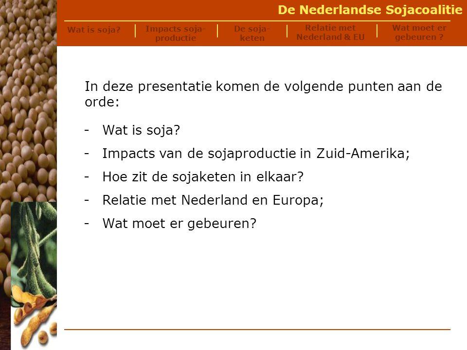 De Nederlandse Sojacoalitie De sojaboon (Glycine max): -een eenjarige peulvrucht (18% olie, 38% eiwit, 25% koolhydraten); -belangrijkste productiegebieden: -Zuid-Amerika (45%); -de Verenigde Staten (38%); -China (8%).