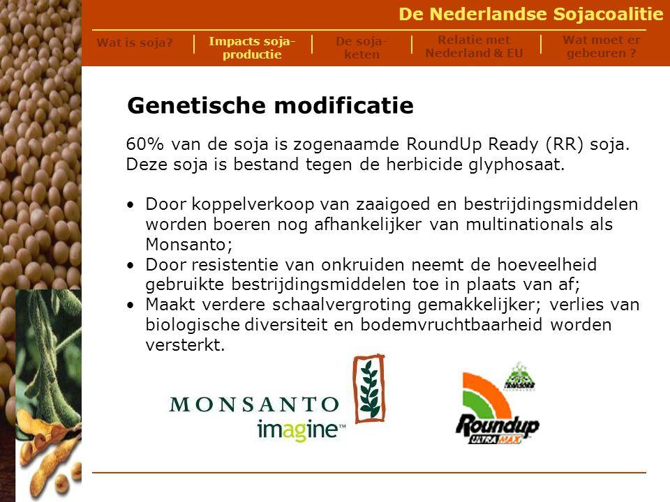 De Nederlandse Sojacoalitie De sojaketen Wat is soja.