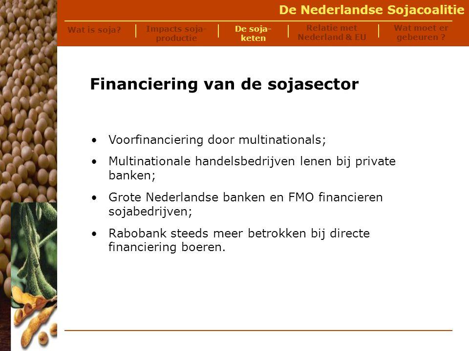 De Nederlandse Sojacoalitie Soja-export Zuid-Amerika (05/06): 83 miljoen ton Soja-import EU (05/06):38 miljoen ton Percentage EU soja uit LA (05/06):89% Relatie met Nederland en Europa - Soja en Europa Impacts soja- productie Wat moet er gebeuren .
