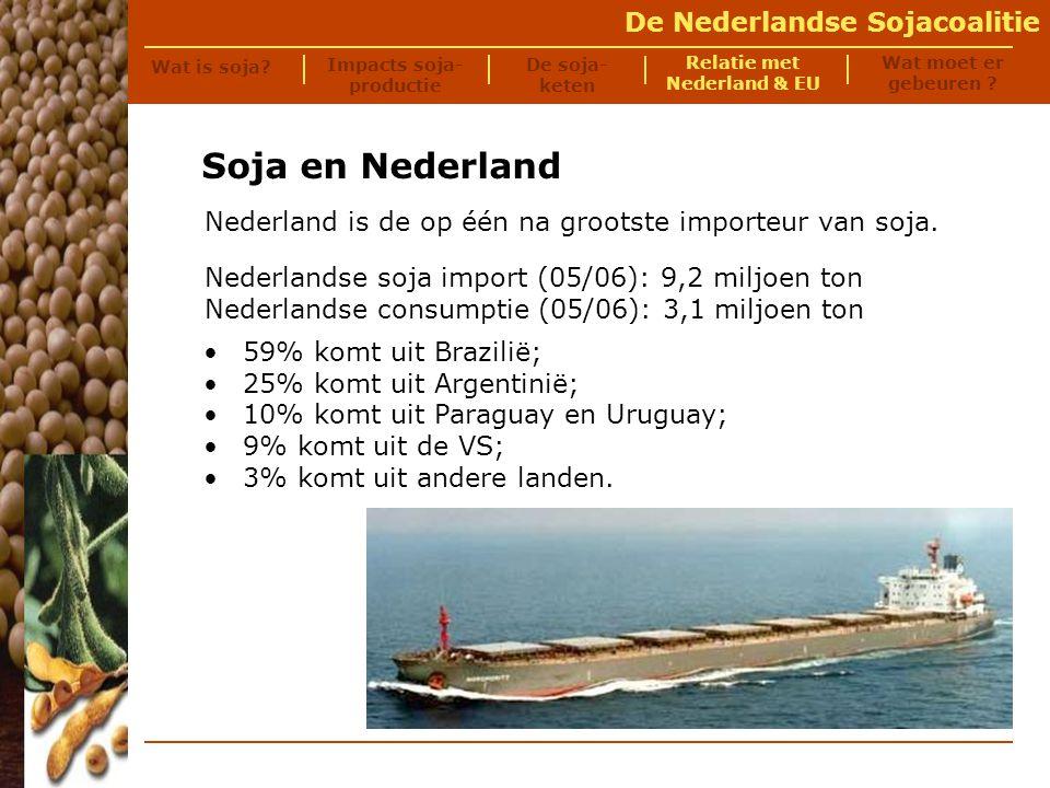 De Nederlandse Sojacoalitie Soja en de Nederlandse intensieve veehouderij Foto © Milieudefensie Wat is soja.