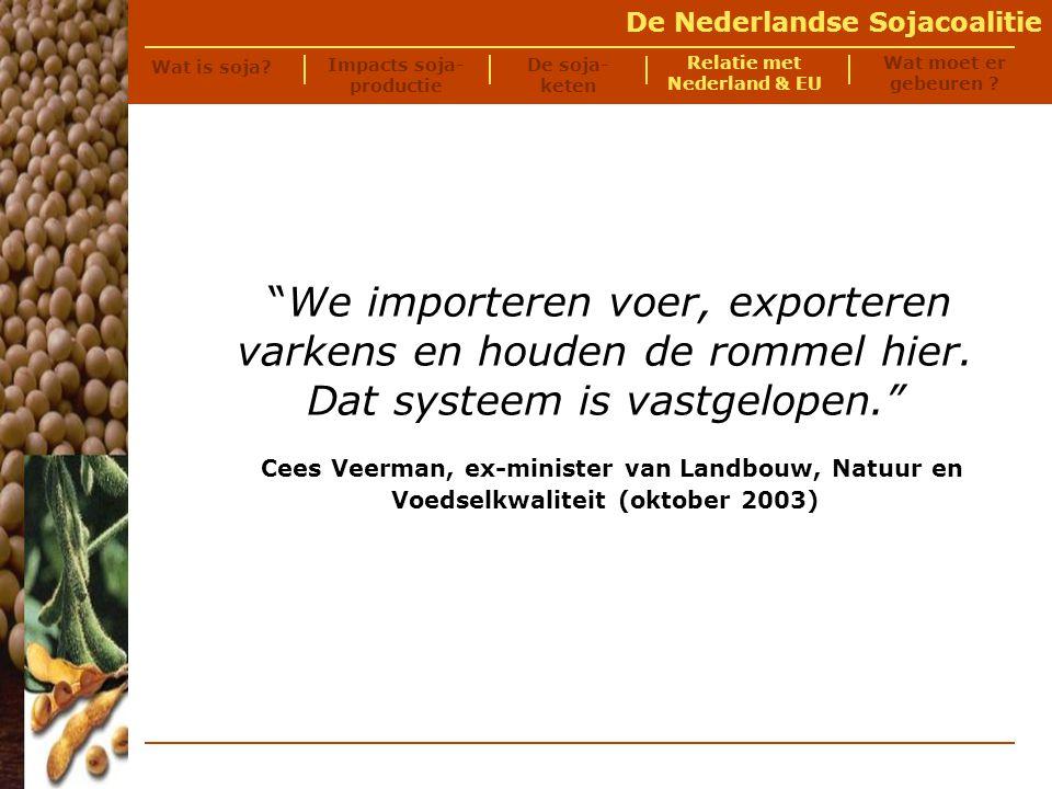 De Nederlandse Sojacoalitie Wat is soja.
