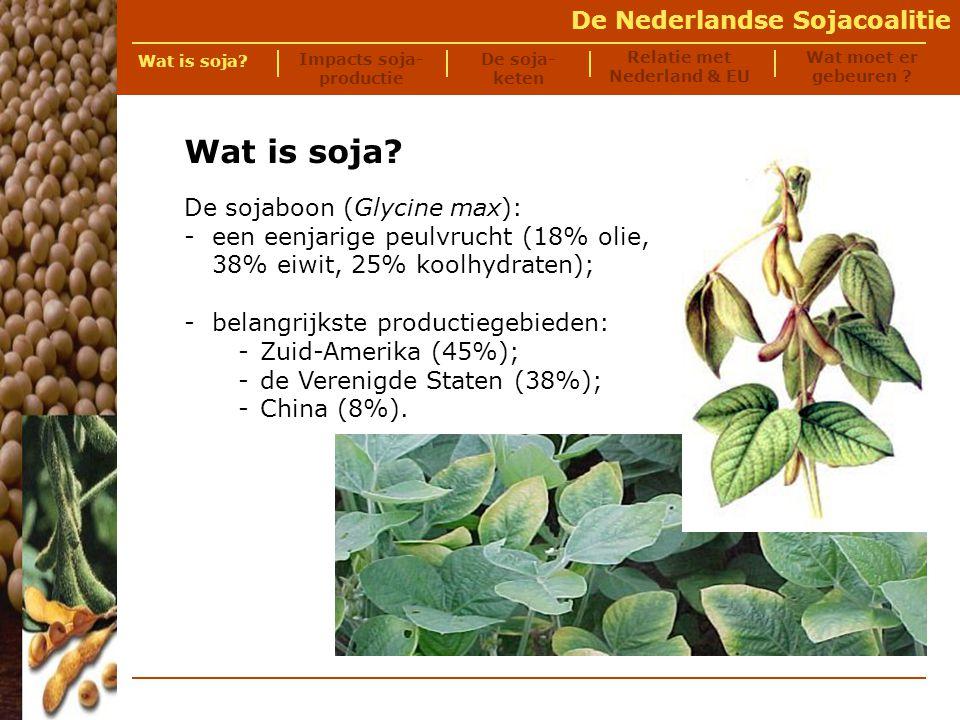De Nederlandse Sojacoalitie De veeteelt sector – meer dan twee derde van de soja wordt wereldwijd gebruikt als veevoer-ingrediënt voor miljoenen vissen varkens koeien kippen Soja wordt gebruikt in drie sectoren Wat is soja.