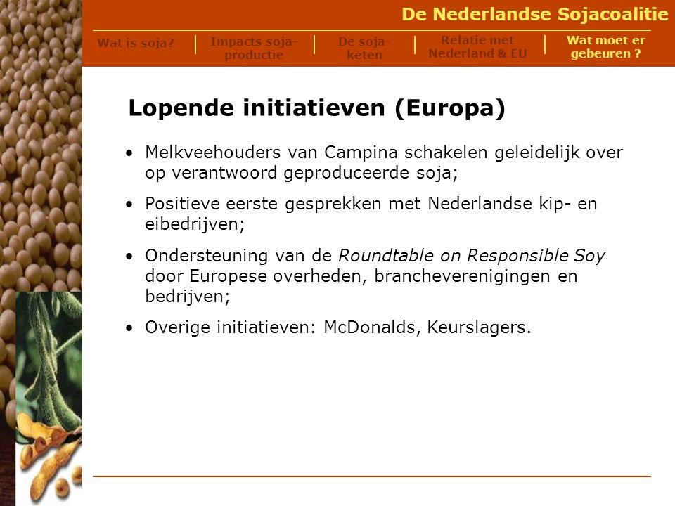 De Nederlandse Sojacoalitie Handelingsperspectieven Criteria voor duurzame import Op langere termijn: alle geïmporteerde soja moet voldoen aan criteria welke momenteel worden ontwikkeld door de Round Table for Responsible Soy (vgl.