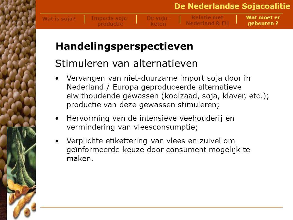 De Nederlandse Sojacoalitie Meer informatie.
