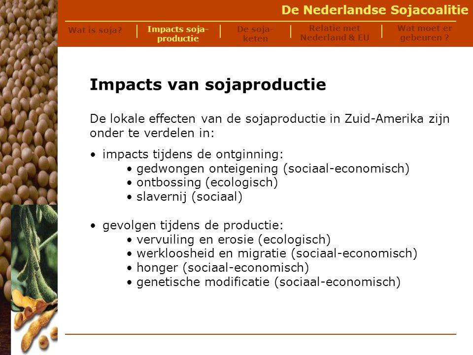 De Nederlandse Sojacoalitie De eerste stap in de sojaproductie is het verkrijgen van land om soja op te verbouwen: -lokale bevolking heeft vaak geen formele landrechten en krijgt geen of een zeer lage vergoeding voor land; -bedreigingen en ge- weld door ingehuurde knokploegen komen veel voor.